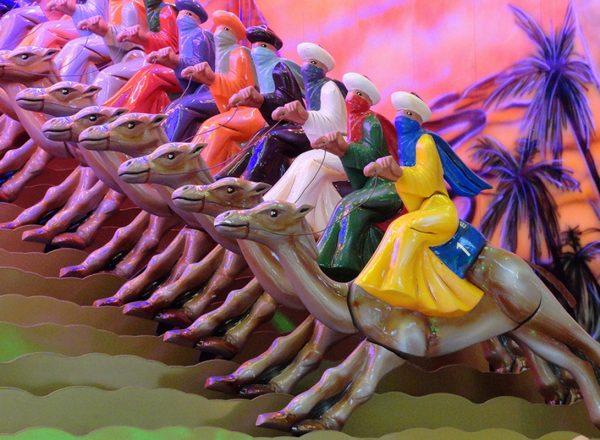 Kamelenrace huren bij KMG events
